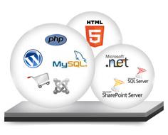Web Development Company Perth