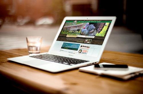 Sydney Website Design Company | Web Design Sydney - WebDesignCity