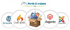What Are the Services Offered by Professional Web Development Company