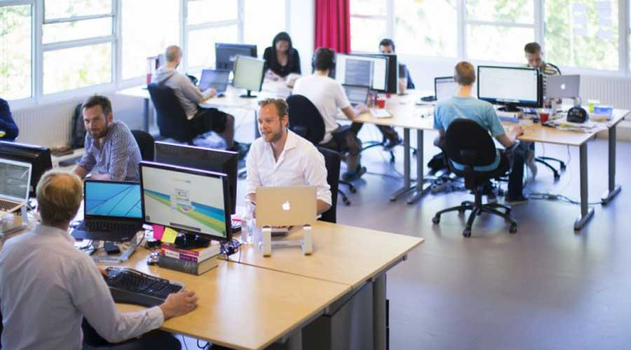 Success in the Field of Web Development