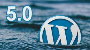 Steps to Take Before Updating to WordPress 5.0